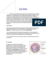 Virus Biologia Ciencias 1