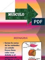 Presentacion de Bioquimica