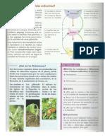 informacion sobre coordinación química