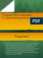 Program Pokok Puskesmas KB