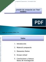 Presentación-tfp (2010)