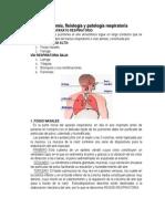 Anatomía. fisiologia y fsiopatologia de los pulmones