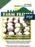 Coconut Farm Establishment