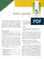 Cap 05 Bibliotecapirata.blogspot.com