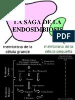 61956379 La Saga de La Endosimbiosis