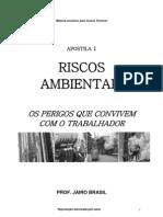 RISCOS AMBIENTAIS