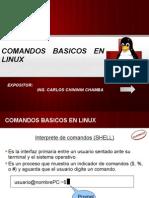 7517445 Comandos Basicos Linux