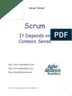 SCRUM Tutorial Common Sense