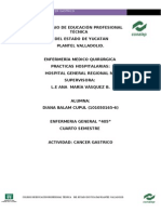 Protocolo Cancer Gastrico Hospital Regional Diana Bc r