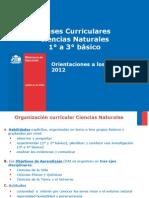 Orientaciones Docente Bcurriculares 2012 Ciencias Naturales