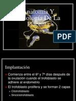 Anatomia y Fisiologia de La Placenta