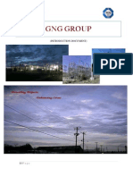 GNG Group Profile 2012