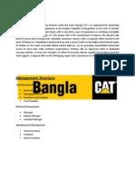 Assignment on BANGLACAT