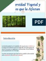 2012Biodiversidad Vegetal y Factores Que La Afectan