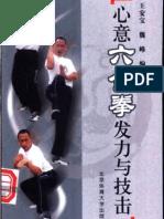 Xinyiliuhequan Fali Yu Jiji.Wang Anyu,Wei Feng