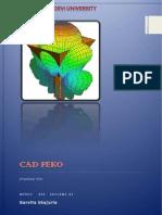 Garvita Cad Feko File Report