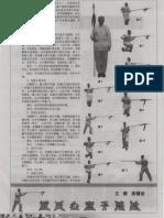 Daishi Xinyiziluqiang