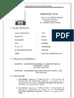 Curriculum Vitae Casaverde Paredes Joel 01