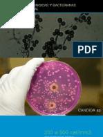 Enfermedades fungicas y bacterianas de la mucosa oral