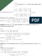 Ejercicios_resueltos Álgebra de matrices