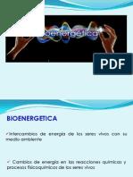 5. Bioenrgética