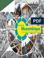 Focus on Mozambique