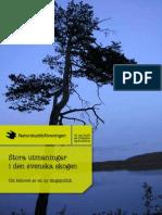 Stora utmaningar i den svenska skogen