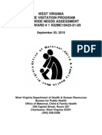 West Virginia Statewide Needs Assessment for Home Visitation Programs (2010)