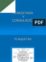 Capitulo 12 Plaquetas, Hemostasia y Coagulacion 2008