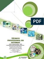 Protocolo Tecnico Profesional en Sistemas