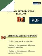 1 Sistema Reproductor 7
