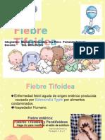 Fiebre Tifoidea Final