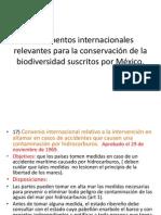 Instrumentos internacionales relevantes para la conservación de la
