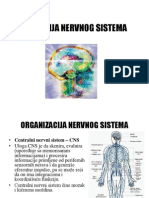 Fiziologija Nervnog Sistema