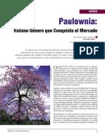 Paulownia 1