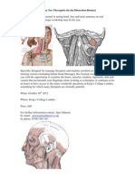 Face and Neck DR PDF Flier