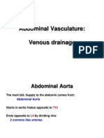 Abdominal Vasculature Venous Drainage E-learning