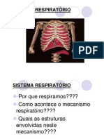 Sistema Respiratorio Ppt Ead Modo de Compatibilidade