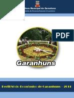 Perfil Sócio-Econômico de Garanhuns 2011- 2010