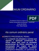 Dpp II - Rito Comum Ordinario - Defesa Escrita