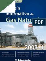 boletin_GFGN_2008-1 (1)