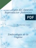 Embriologa Del Aparato Reproductor Femenino 1221584680238776 8