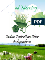 Indian Agriculture After Independence