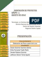 Proyecto Pisco 2