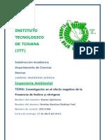 Investigacion efectos negativos Fosforo Nitrogeno Ing. Ambiental