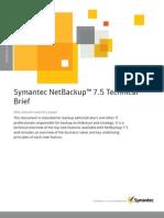 NETBACKUP White Paper