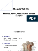 Thoracic Wall 2 Muscles Arteries Veins Nerves E-learning#2
