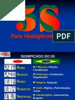 Para Multiplicadores 5s
