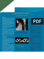 Esophageal Web Final
