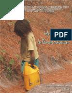 Mambocaure - Informe Final
